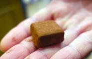 brusselschocolatetour-26