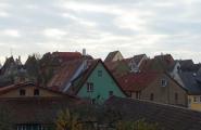 rothenberg-12