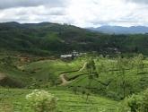 srilanka-17