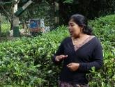 srilanka-35