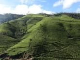 srilanka-32
