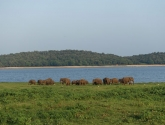 srilanka-69