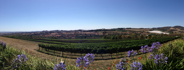 View from Borrodell Winery