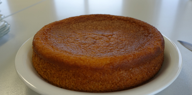 glutenfree-orange-coconut-cake01