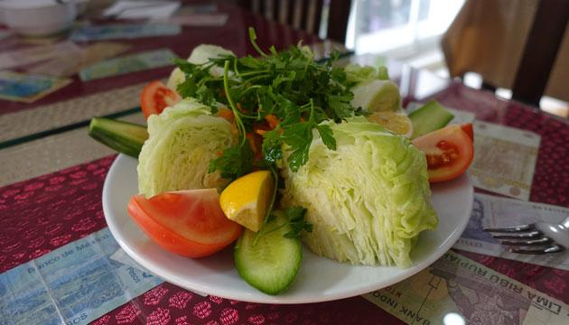 Green Salad (6 Turkish Lira)